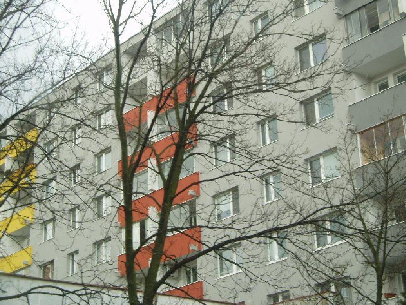 1236513147_gallayova_1-9.jpg
