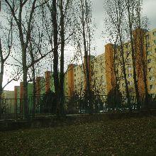 Pekníkova